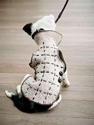 Strickanleitung: Hundemantel - amicella.de