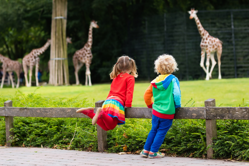 Kinder im Zoo